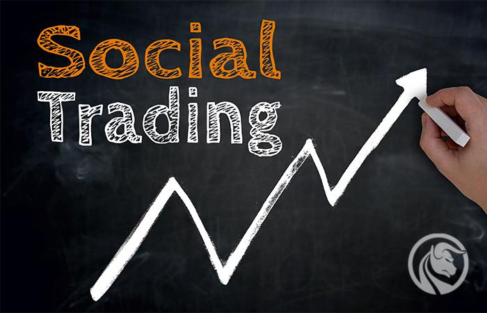 social trading w praktyce