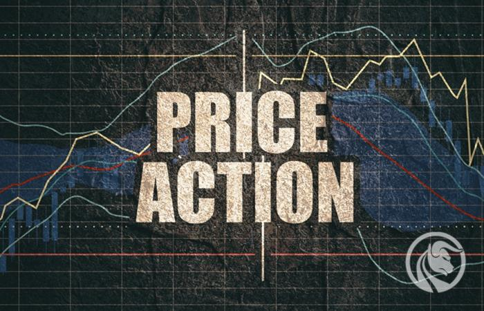 Preço Ação