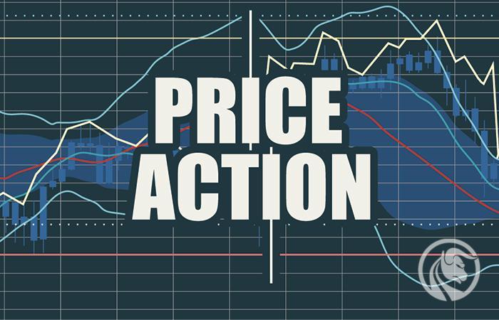 price action nial fuller