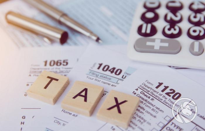 Belastingforex winst