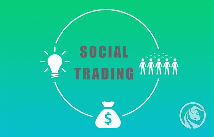social trading wady zalety