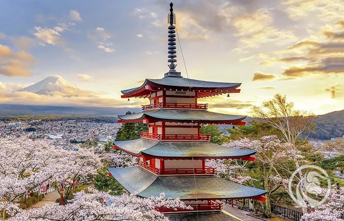 forex japonia