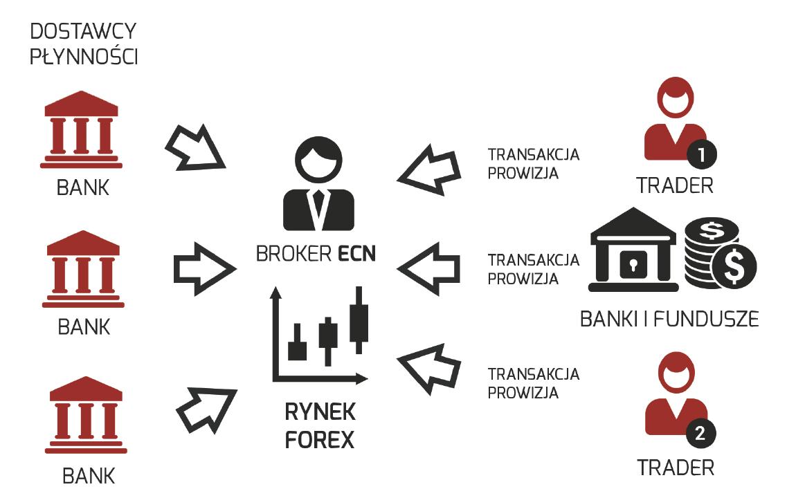 tipos de corretores forex ECN corretor
