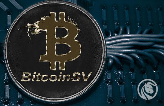 bsv bitcoin satoshi vision