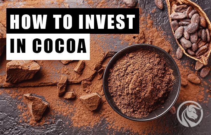 jak inwestować w kakao