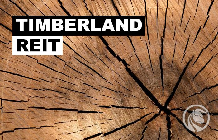 timberland reit