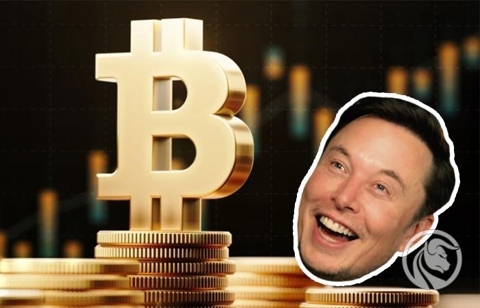 rynek kryptowalut tesla bitcoiny