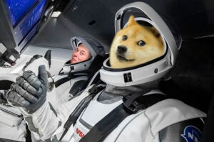doge to the moon