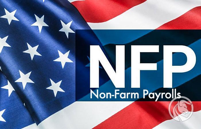 relatório de folha de pagamento não agrícola nfp