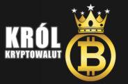 Bitcoin re delle criptovalute