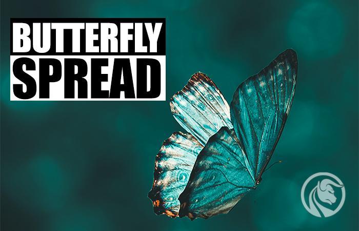 spread motyla opcje